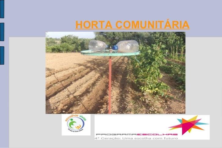 HORTA COMUNITÁRIA Projecto Escolhas Vivas
