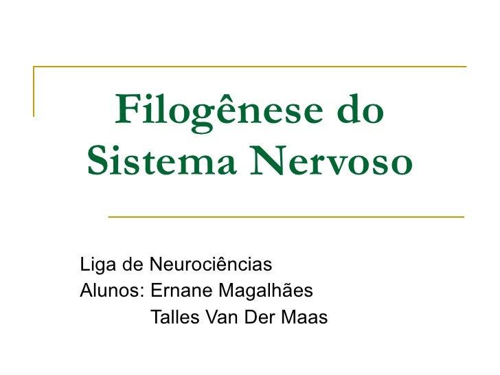 Filogênese do Sistema Nervoso Liga de Neurociências Alunos: Ernane Magalhães Talles Van Der Maas
