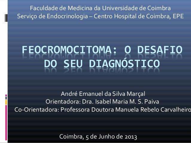 André Emanuel da Silva MarçalOrientadora: Dra. Isabel Maria M. S. PaivaCo-Orientadora: Professora Doutora Manuela Rebelo C...