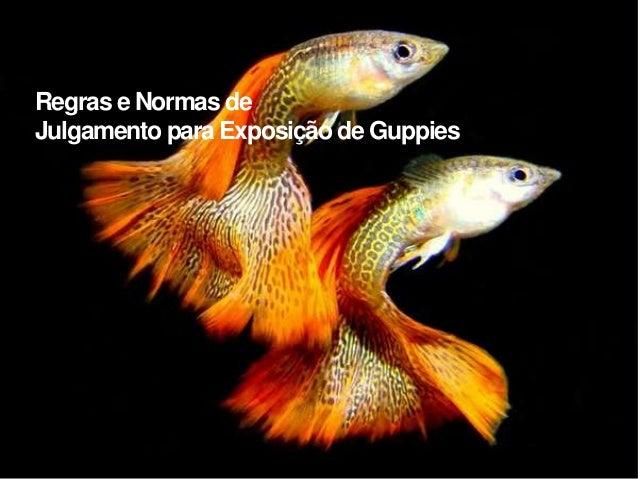 Regras e Normas de  Julgamento para Exposição de Guppies