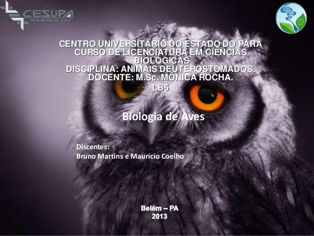 CENTRO UNIVERSITÁRIO DO ESTADO DO PARÁ CURSO DE LICENCIATURA EM CIÊNCIAS BIOLÓGICAS DISCIPLINA: ANIMAIS DEUTEROSTOMADOS. D...