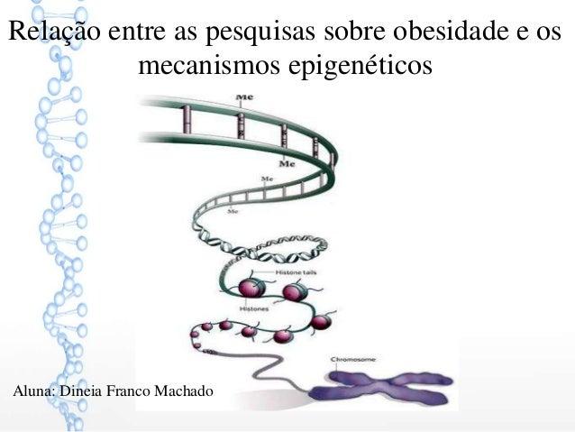 Relação entre as pesquisas sobre obesidade e os mecanismos epigenéticos Aluna: Dineia Franco Machado