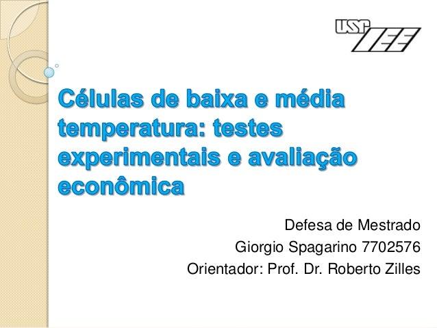 Defesa de Mestrado       Giorgio Spagarino 7702576Orientador: Prof. Dr. Roberto Zilles