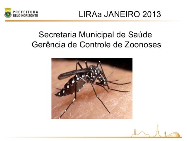 LIRAa JANEIRO 2013Secretaria Municipal de SaúdeGerência de Controle de Zoonoses