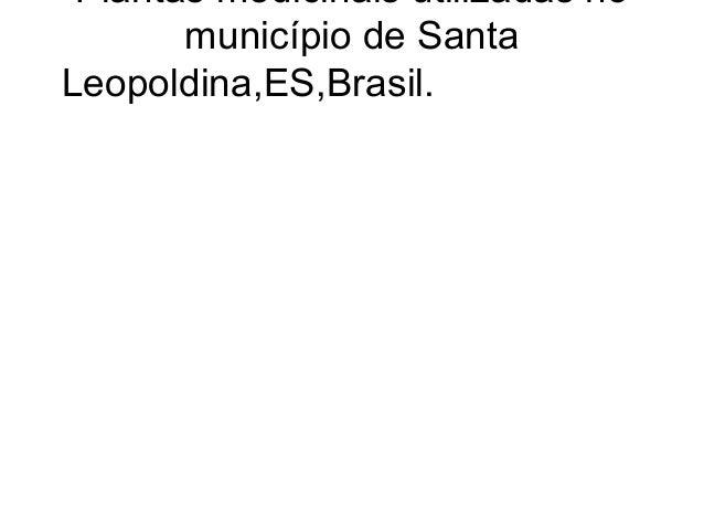 Plantas medicinais utilizadas no       município de SantaLeopoldina,ES,Brasil.