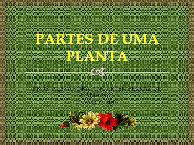 PROFª ALEXANDRA ANGARTEN FERRAZ DE CAMARGO 2º ANO A- 2015