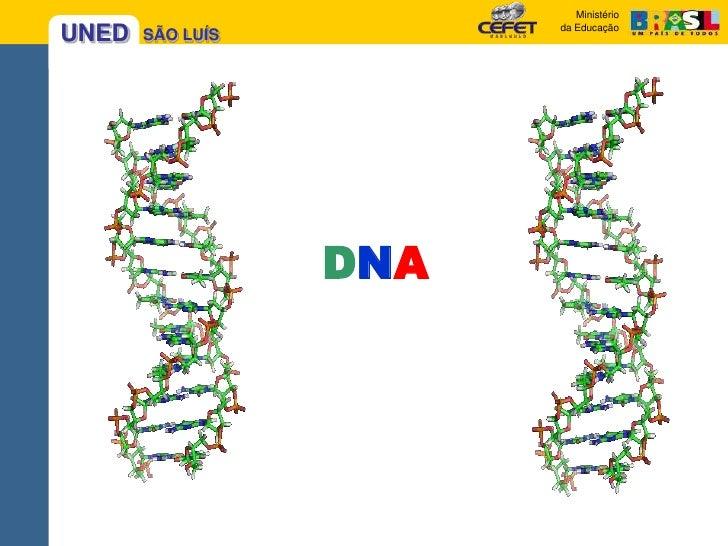 DNA<br />