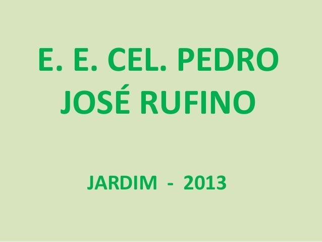 E. E. CEL. PEDRO JOSÉ RUFINO JARDIM - 2013