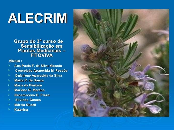 <ul><li>Grupo do 3º curso de Sensibilização em Plantas Medicinais – FITOVIVA </li></ul><ul><li>Alunas :  </li></ul><ul><li...