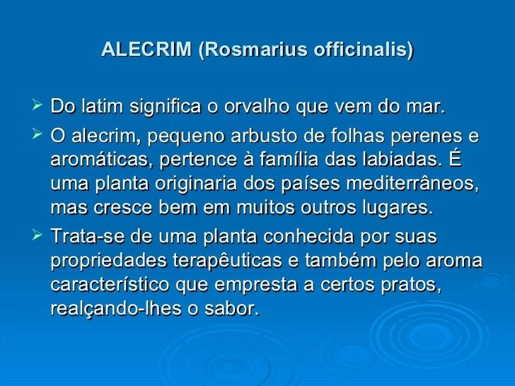 Apresentação do alecrim 2 Slide 2