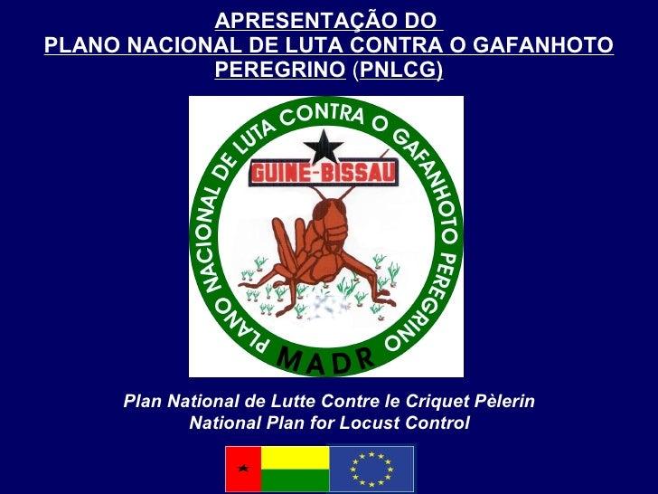 APRESENTAÇÃO DO  PLANO NACIONAL DE LUTA CONTRA O GAFANHOTO PEREGRINO  ( PNLCG) Plan National de Lutte  Contre le Criquet P...