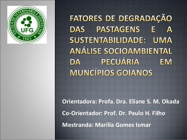 Orientadora: Profa. Dra. Eliane S. M. Okada Co-Orientador: Prof. Dr. Paulo H. Filho Mestranda: Marília Gomes Ismar