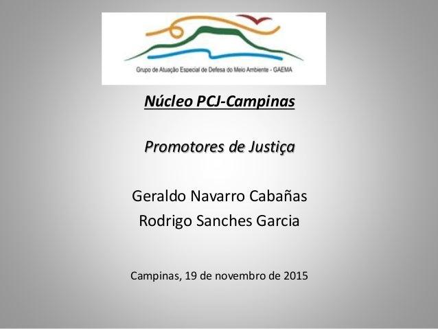 Núcleo PCJ-Campinas Promotores de Justiça Geraldo Navarro Cabañas Rodrigo Sanches Garcia Campinas, 19 de novembro de 2015