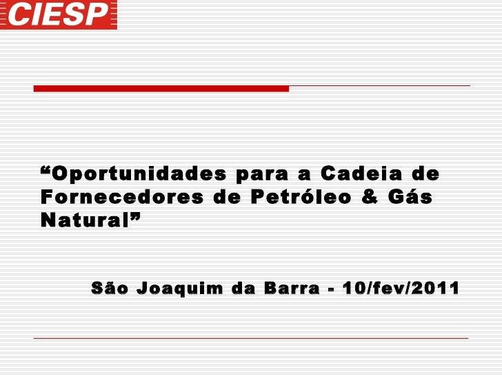 """"""" Oportunidades para a Cadeia de Fornecedores de Petróleo & Gás Natural"""" São Joaquim da Barra - 10/fev/2011"""