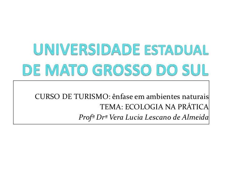 CURSO DE TURISMO: ênfase em ambientes naturais TEMA: ECOLOGIA NA PRÁTICA Profª Drª Vera Lucia Lescano de Almeida