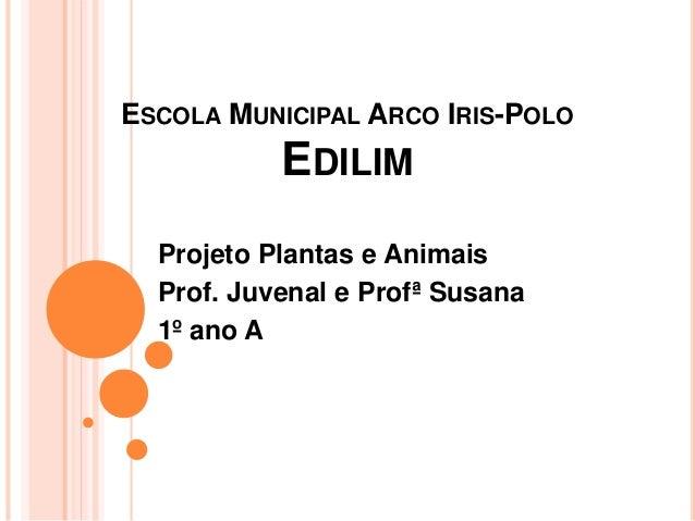 ESCOLA MUNICIPAL ARCO IRIS-POLO EDILIM Projeto Plantas e Animais Prof. Juvenal e Profª Susana 1º ano A