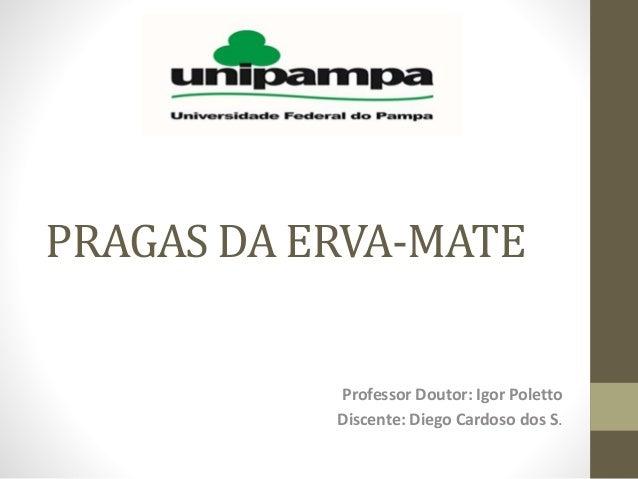 PRAGAS DA ERVA-MATE Professor Doutor: Igor Poletto Discente: Diego Cardoso dos S.