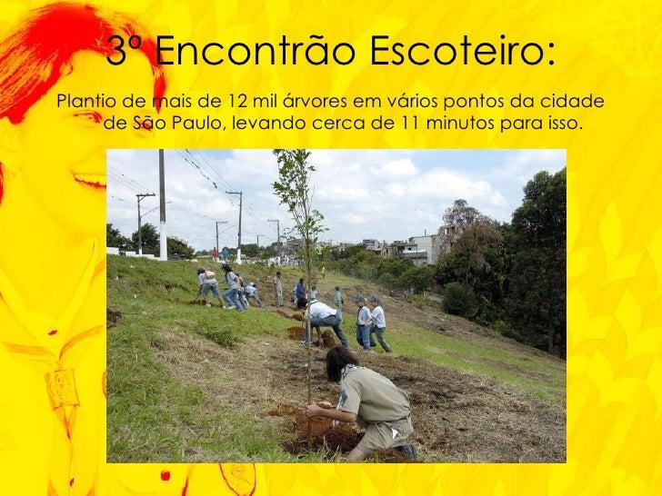 <ul><li>Plantio de mais de 12 mil árvores em vários pontos da cidade de São Paulo, levando cerca de 11 minutos para isso. ...