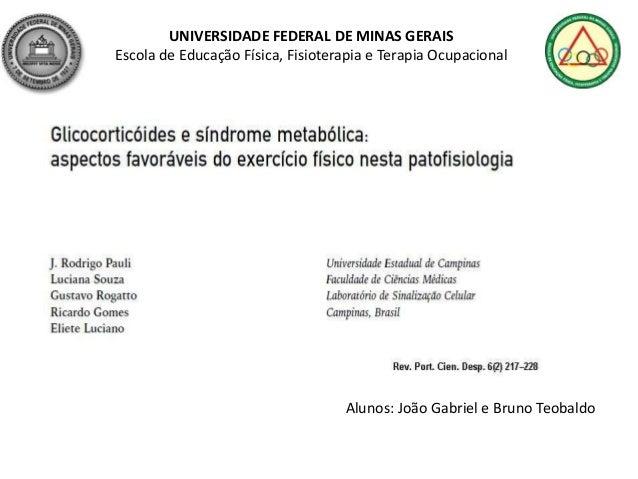 UNIVERSIDADE FEDERAL DE MINAS GERAISEscola de Educação Física, Fisioterapia e Terapia OcupacionalAlunos: João Gabriel e Br...