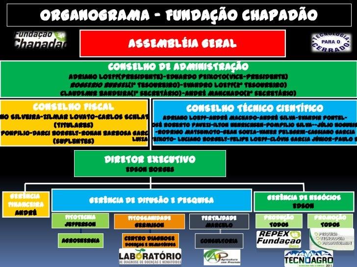ORGANOGRAMA - FUNDAÇÃO CHAPADÃO                                      ASSEMBLÉIA GERAL                                CONSE...