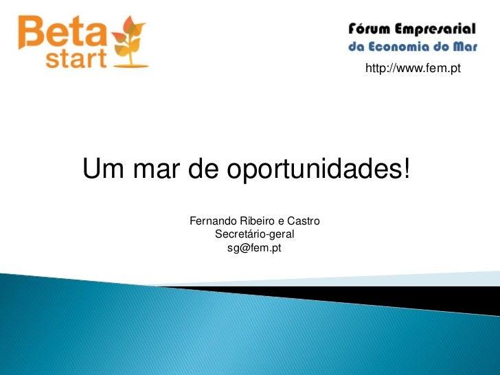 http://www.fem.ptUm mar de oportunidades!       Fernando Ribeiro e Castro            Secretário-geral              sg@fem.pt