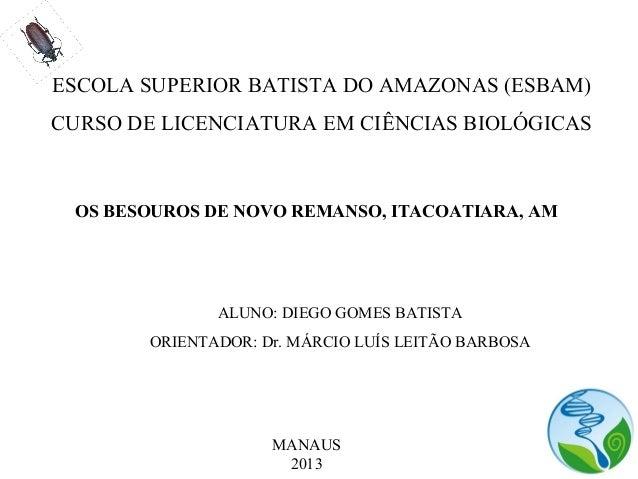 ESCOLA SUPERIOR BATISTA DO AMAZONAS (ESBAM) CURSO DE LICENCIATURA EM CIÊNCIAS BIOLÓGICAS OS BESOUROS DE NOVO REMANSO, ITAC...