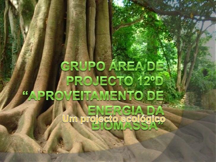 "Grupo ÁREA DE projecto 12ºD ""Aproveitamento de Energia da Biomassa""<br />Um projecto ecológico<br />"