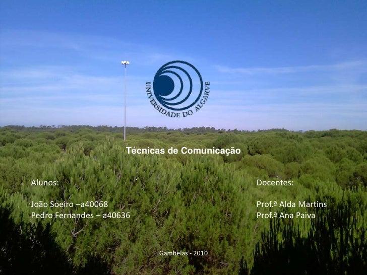 Técnicas de Comunicação<br />Alunos:<br />João Soeiro –a40068<br />Pedro Fernandes – a40636<br />Docentes:<br />Prof.ª Ald...