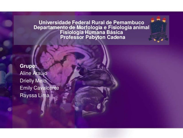 Universidade Federal Rural de Pernambuco Departamento de Morfologia e Fisiologia animal Fisiologia Humana Básica Professor...