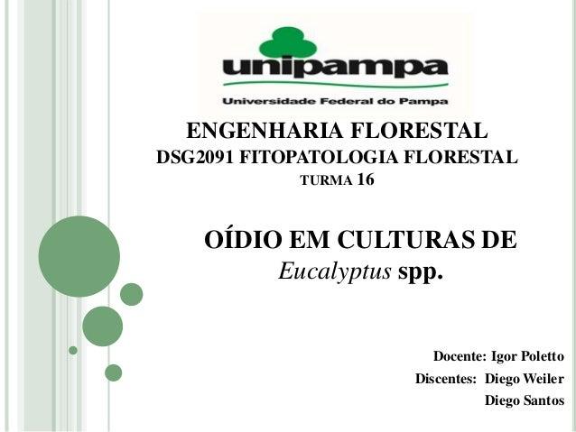 ENGENHARIA FLORESTAL DSG2091 FITOPATOLOGIA FLORESTAL TURMA 16 Docente: Igor Poletto Discentes: Diego Weiler Diego Santos O...