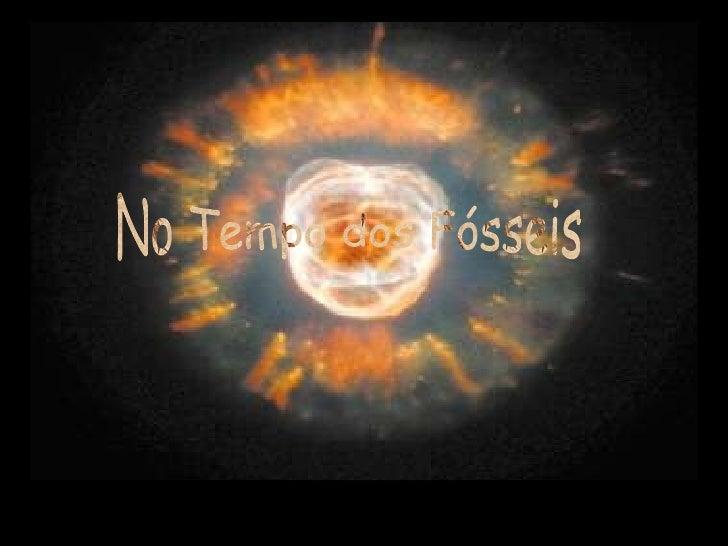 ApresentaçãO Fosseis 2009 2010
