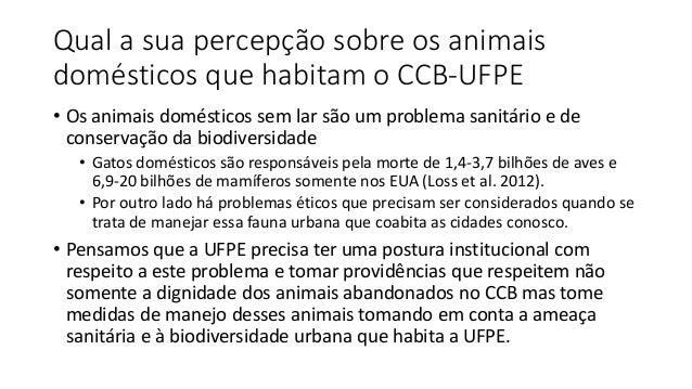 Qual a sua percepção sobre os animais domésticos que habitam o CCB-UFPE • Os animais domésticos sem lar são um problema sa...
