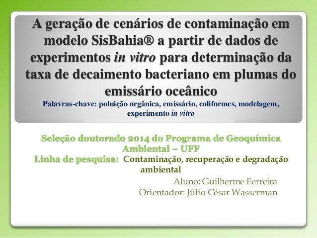 A geração de cenários de contaminação em  modelo SisBahia® a partir de dados de  experimentos in vitro para determinação d...