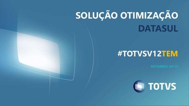 SOLUÇÃO OTIMIZAÇÃO DATASUL #TOTVSV12TEM SETEMBRO 20115