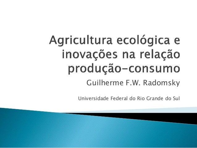 Guilherme F.W. Radomsky Universidade Federal do Rio Grande do Sul