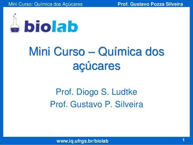 Mini Curso: Química dos Açúcares  Prof. Gustavo Pozza Silveira  Mini Curso – Química dos açúcares Prof. Diogo S. Ludtke Pr...