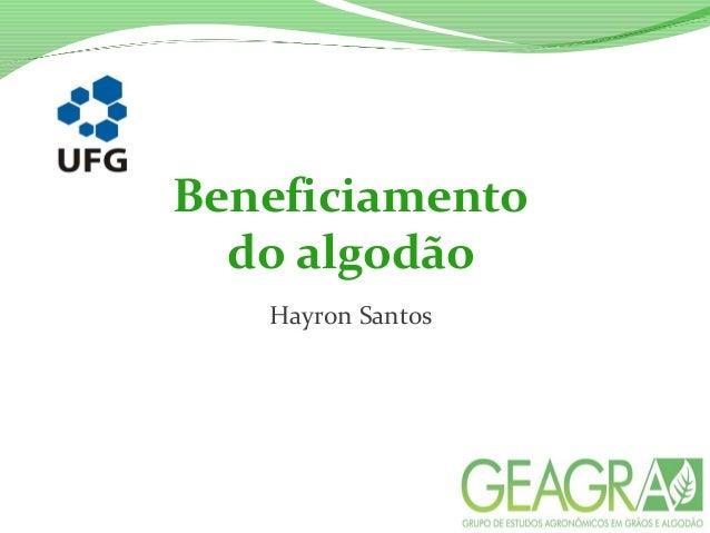 Beneficiamento do algodão Hayron Santos