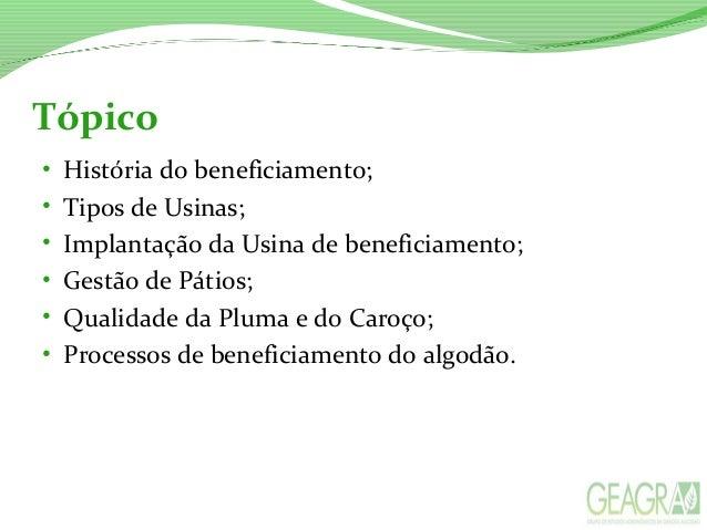 BENEFICIAMENTO DO ALGODÃO Slide 2