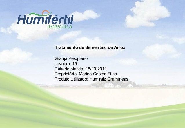 Granja Pesqueiro Lavoura: 15 Data do plantio: 18/10/2011 Proprietário: Marino Cestari Filho Produto Utilizado: Humiraiz Gr...