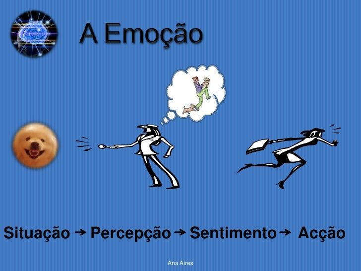 Situação   Percepção      Sentimento   Acção                   Ana Aires
