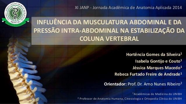 XI JANP -Jornada Acadêmica de Anatomia Aplicada 2014  INFLUÊNCIA DA MUSCULATURA ABDOMINAL E DA PRESSÃO INTRA-ABDOMINAL NA ...