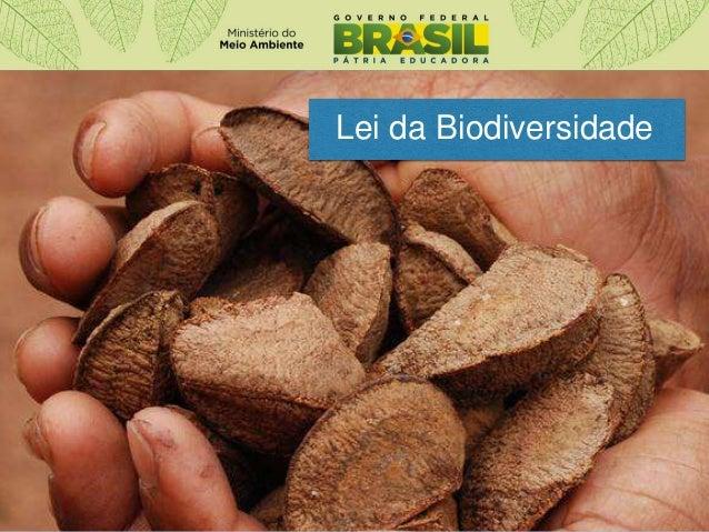 Lei da Biodiversidade