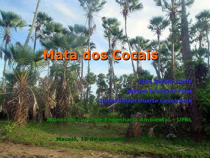 Jade Varallo Corte Jéssica Francyne Frias Jonas Rafael Duarte Cavalcante Alunos do curso de Engenharia Ambiental – UFAL Ma...