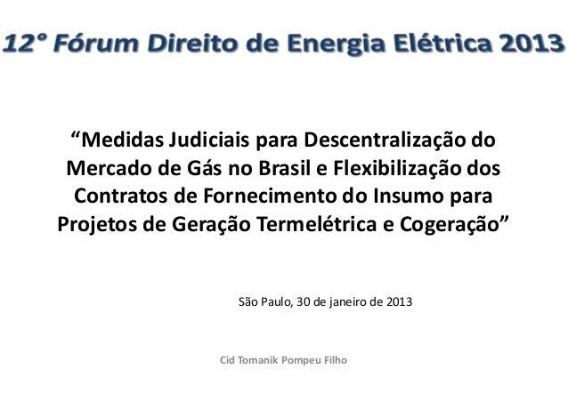 """""""Medidas Judiciais para Descentralização do Mercado de Gás no Brasil e Flexibilização dos  Contratos de Fornecimento do In..."""