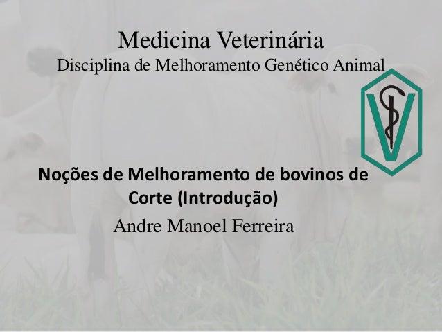 Medicina Veterinária Disciplina de Melhoramento Genético Animal Noções de Melhoramento de bovinos de Corte (Introdução) An...