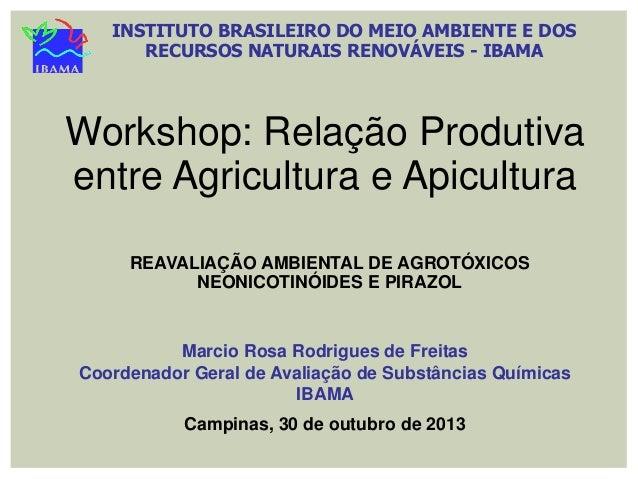 INSTITUTO BRASILEIRO DO MEIO AMBIENTE E DOS RECURSOS NATURAIS RENOVÁVEIS - IBAMA  Workshop: Relação Produtiva entre Agricu...