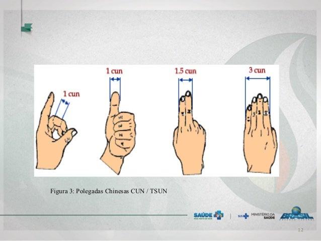 Figura 3: Polegadas Chinesas CUN / TSUN 12