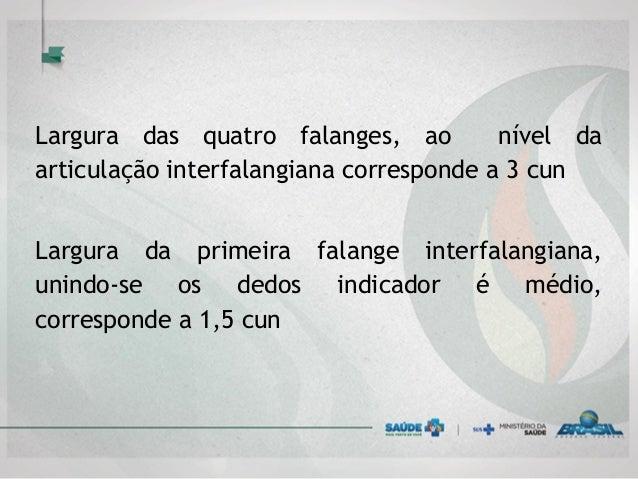 Largura das quatro falanges, ao nível da articulação interfalangiana corresponde a 3 cun Largura da primeira falange inter...