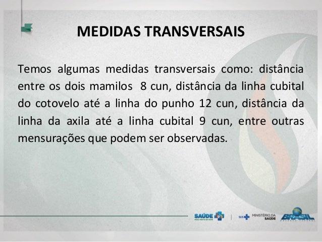 MEDIDAS TRANSVERSAIS Temos algumas medidas transversais como: distância entre os dois mamilos 8 cun, distância da linha cu...
