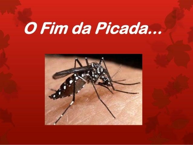 O Fim da Picada...